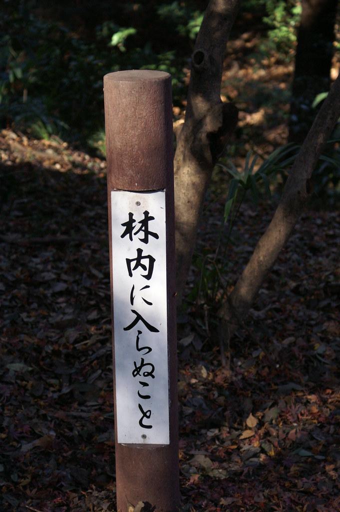 Japan0034