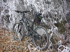 PICT0627 - Fotosession mit dem Bike
