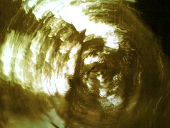 spiralling treeview #6
