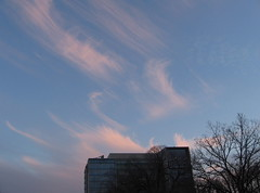 winter afternoon sky