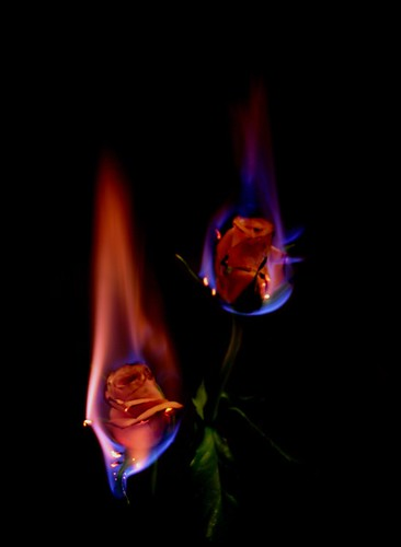 Flames_of_Desire_by_AngelicStudios