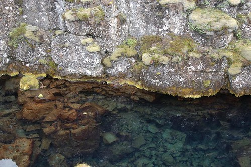Rock,_stream_@_Thingvellir,_Iceland.jpg