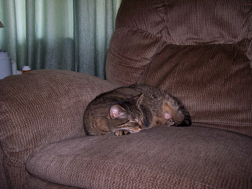 Maleficent asleep on the recliner