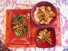 what the hell _does_ a vegan eat anyway?: Kung Pao Tofu ...