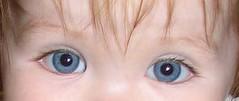 nikkis eyes