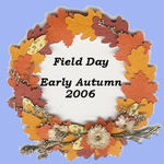 field_day_button_2_5