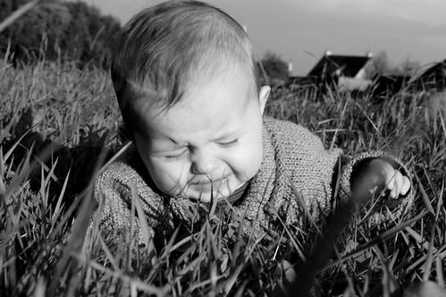 Grassprietjes in 't gezicht