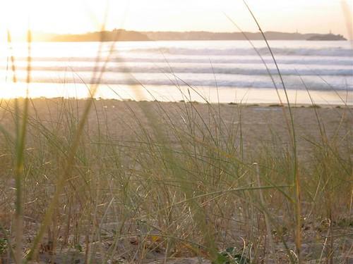 275556994 4bc3c36f5a Fotos para el Concurso  Marketing Digital Surfing Agencia
