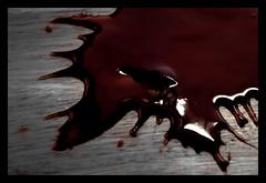 Vampire blood photo by ˙Cаvin 〄