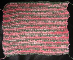 Ballband Dishcloth (Back)