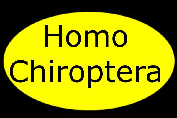 Yellow Chiroptera