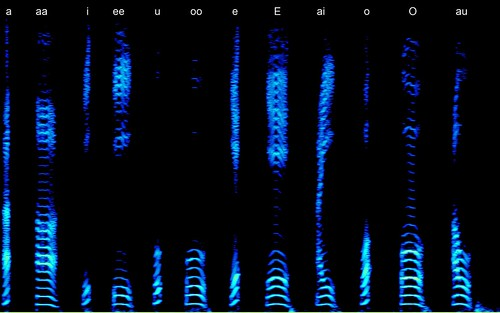 Vowels spectrogram