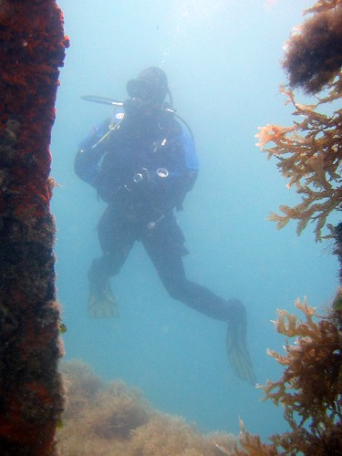 diver in poor visibility