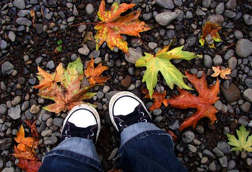 Mmm... fall.
