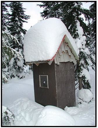 outhouse roof