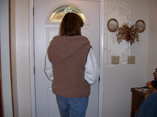 back view knit sweater vest