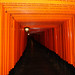 Camino de tooris en Fushimi Inari