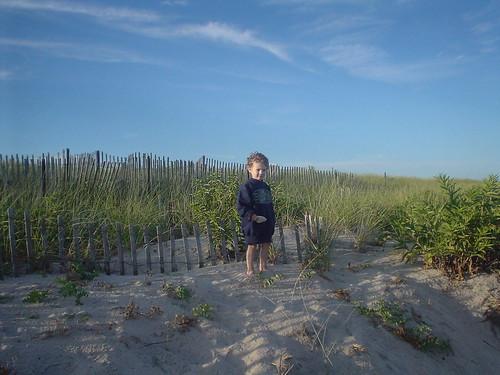 will dunes 2