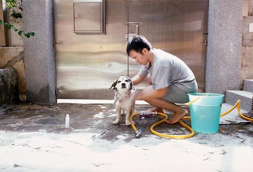 I am bathing puppy