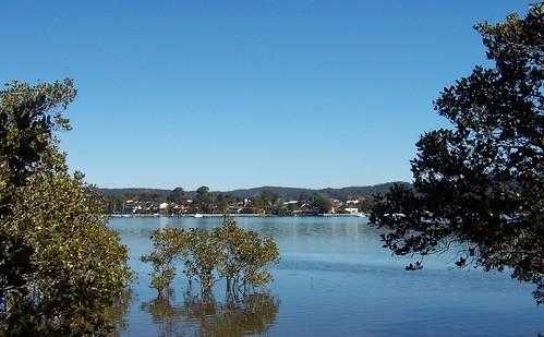 Point Frederick from Edogawa Gardens East Gosford