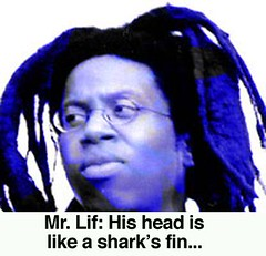 mr lif sharks fin