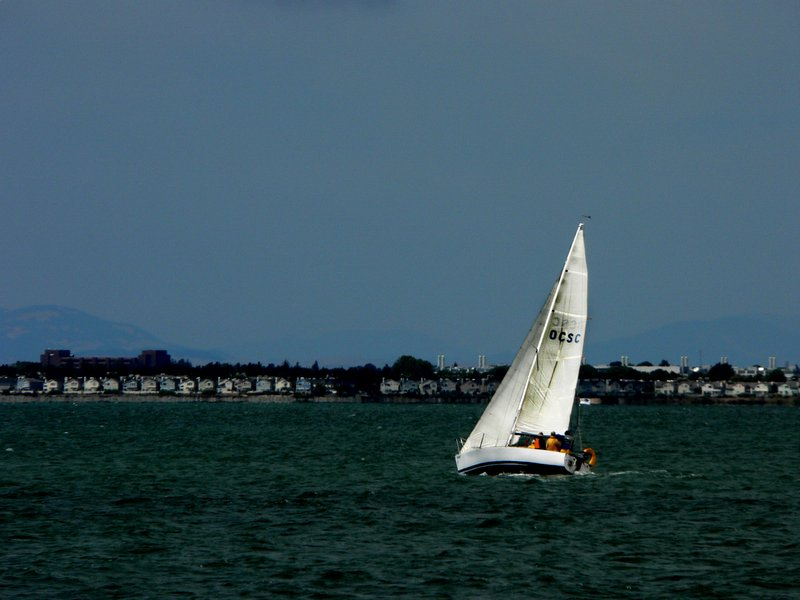 Sailboat in the Bay