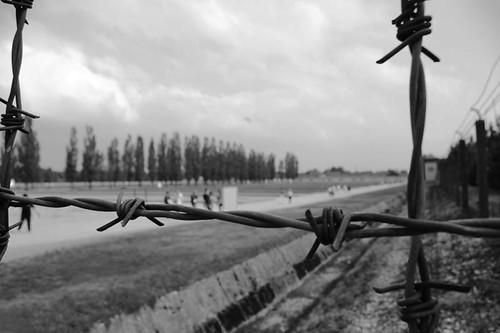Barbed Wire Fence. dachau barbed wire