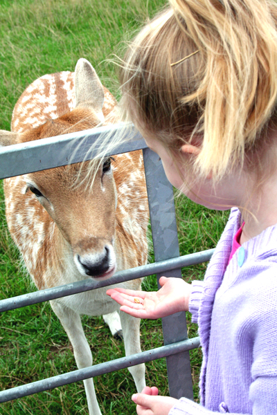 freya and deer 31.08.06