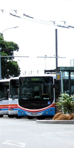 Wellington city buses