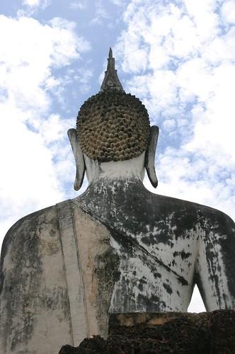 Budda's back