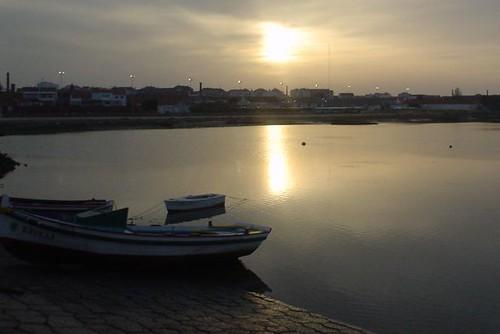 morningsuns