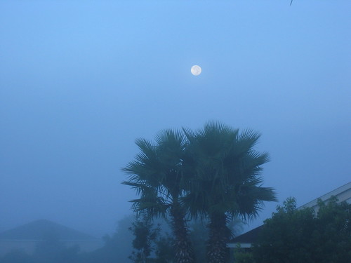 Moon Setting in Fog