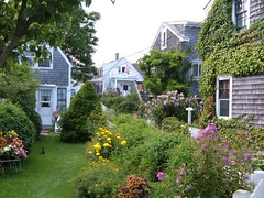 Cozy Cottages in Provincetown