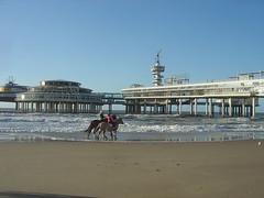 Beachrider