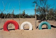 Martin Parr/Magnum Photos
