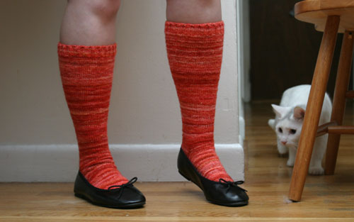 Sock Hop socks, plus Fry