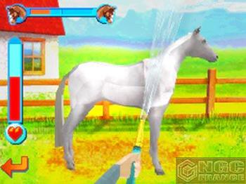 Horsez For Nintendo DS