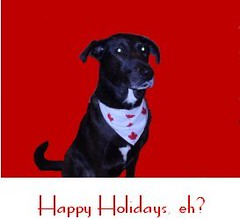 holiday cards 2005 front