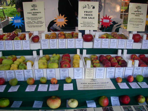 Apple orchard display