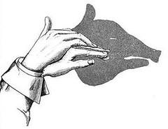 教你如何玩手影