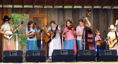 Bluegrass family