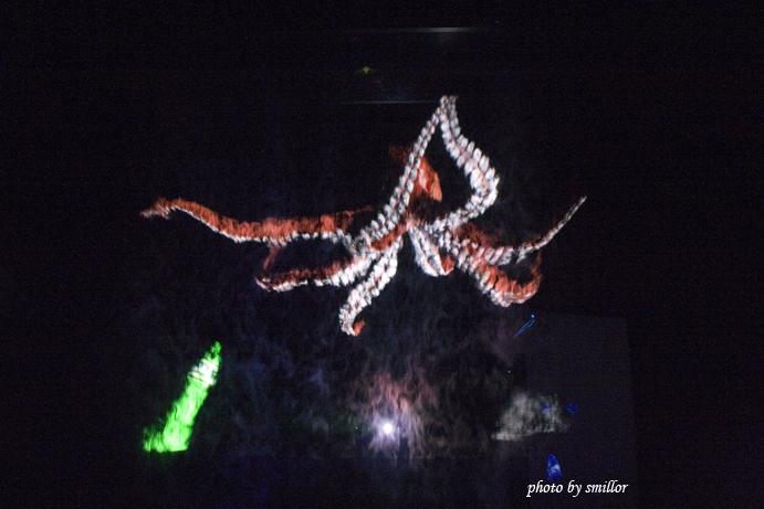 燈光投射在虛幻霧氣所產生的水幕電影 _ 深海八爪章魚
