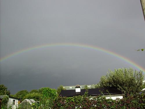 Regenbogen (01)