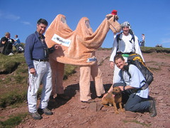 Camel And Friends - Pen y Fan