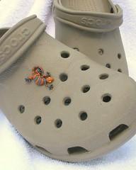 Crocs Jibbitz 6010