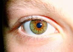 Photo of Ben's eye, taken in GCSE Business Studies