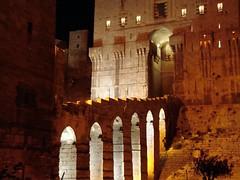 أجمل الصور لقلعة حلب روووعة 256714146_bc7c6676c4_m.jpg