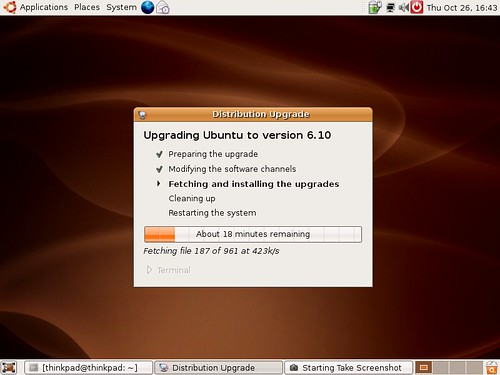 Updating to Ubuntu 6.10