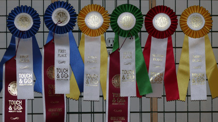 August 19 & 20, 2006 Ribbons