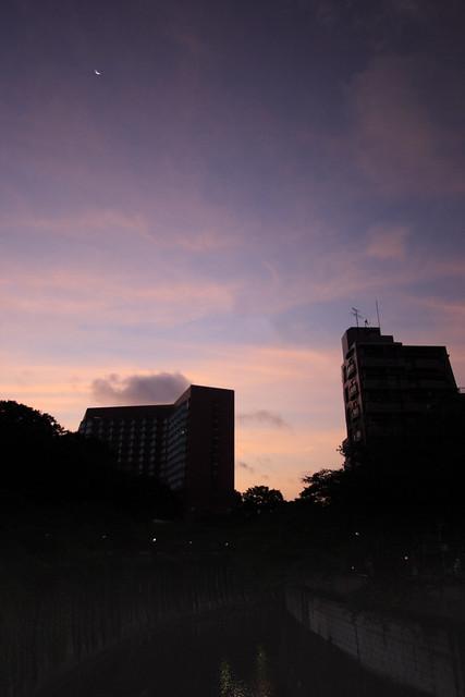 晩夏の印象